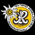 Edelweiß Rammenau Logo